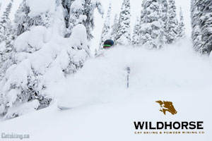 wildhorse-catskiing-dec-28th